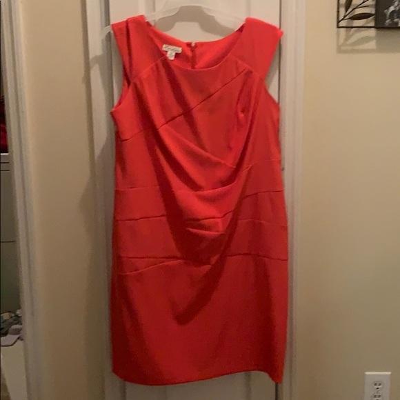 Kim Rogers Dresses & Skirts - Never worn Dress